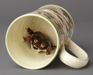 Dipped ware frog mug detail, 1992.40
